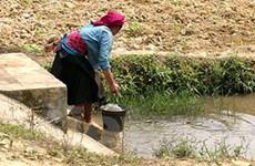 Nước bẩn gây chết người nhiều hơn chiến tranh