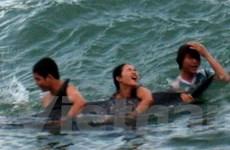 Cá heo khoảng 1,5 tạ mắc cạn ở bãi biển Nhật Lệ