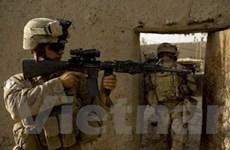 Lực lượng Mỹ ở Afghanistan lên đến 94.000 người