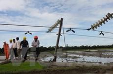 Khắc phục các sự cố điện do ảnh hưởng của bão