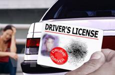 Vào đồn cảnh sát hỏi đường, bị phạt treo bằng lái
