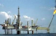 Romania quan tâm tới lĩnh vực dầu khí Việt Nam