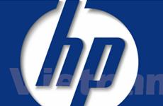 HP đào tạo sinh viên Việt Nam kỹ năng phần mềm