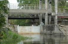 Nước mặn xâm nhập 70km trong mùa khô ở ĐBSCL
