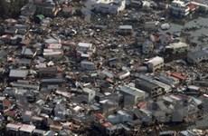 Quốc tế tích cực giúp Nhật tìm nạn nhân động đất