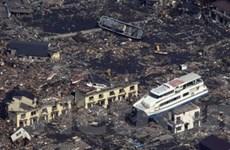 Nhật Bản: Lại xảy ra động đất tại khu vực Tokyo