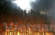 Mátxcơva đối mặt nguy cơ cháy rừng và than bùn