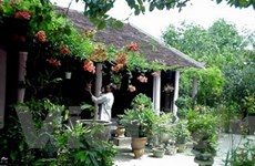 """Thừa Thiên-Huế có nguy cơ """"chảy máu"""" nhà vườn"""