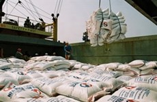 Điều chỉnh sản xuất để tăng trưởng xuất khẩu gạo
