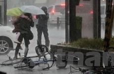Gió lốc gây thiệt hại ở khu vực Đông Nam Nhật Bản