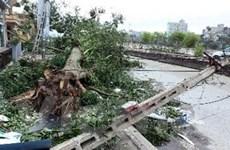 Hỗ trợ 210 tỷ đồng và 2.500 tấn gạo sau bão số 8
