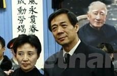 Thông tin về luật sư bào chữa cho ông Bạc Hy Lai