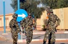Algeria sẽ không đưa binh sỹ đến tham chiến ở Mali