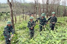 Triển lãm khắc phục hậu quả bom mìn ở Việt Nam
