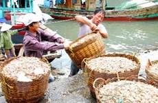 Xây khu kinh tế biển Vân Đồn đạt đẳng cấp quốc tế