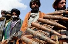 Taliban sát hại một trưởng đoàn đàm phán hòa bình