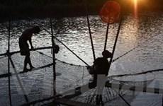 Vựa cá hồ Pá Khoang ở tỉnh Điện Biên đã cạn kiệt
