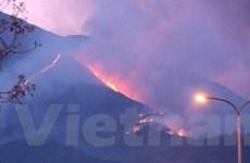 Phú Yên: Cháy 50 hecta rừng trên núi Chóp Chài