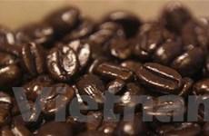 Cacao và càphê tăng giá do đồng bảng Anh suy yếu