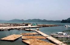 Quảng Ninh áp dụng công nghệ phát triển kinh tế biển