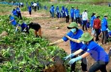Tuổi trẻ Việt-Lào-Campuchia hành động vì môi trường