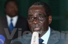 Tổng thống Zimbabwe công bố danh sách nội các mới