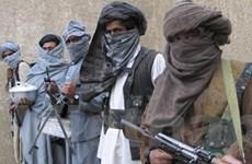 Taliban ra điều kiện hòa đàm với Chính phủ Pakistan