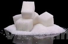 Sử dụng chất ngọt nhân tạo không hề giúp giảm cân