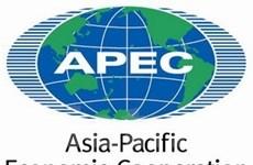 Việt Nam sẽ đóng góp tích cực cho Hội nghị APEC 21