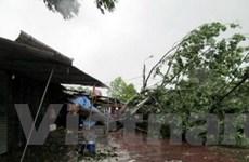 Quảng Trị cứu trợ người dân bị thiệt hại vì bão số 10