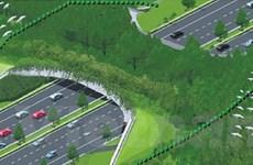 Singapore xây cầu sinh thái đầu tiên ở Đông Nam Á