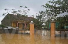 Cơn bão số 11 và mưa lũ đã làm 10 người thiệt mạng