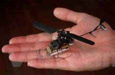 Máy bay lên thẳng siêu mini PD-100 Black Hornet