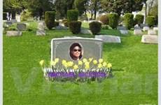 Thiếu đất, lập nghĩa trang... trên mạng