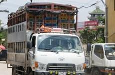 Phát hiện xe tải chở 4 tấn gà lậu tuồn vào Hà Nội
