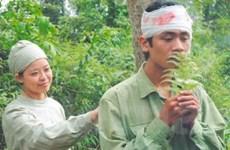 Điện ảnh Việt: Hy vọng đến gần hơn với khán giả
