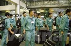 Thêm gần 300 lao động xuất khẩu sang Hàn Quốc