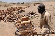 VN chia sẻ kinh nghiệm phát triển với Afghanistan
