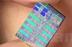 Đài Loan đầu tư 900 triệu USD sản xuất chip nhớ