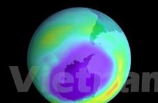 WMO: Lỗ thủng tầng ozone đang nhỏ dần