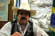 Honduras họp về việc phục chức cho ông Zelaya