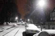 Bão tuyết dữ dội bao phủ nhiều nơi tại châu Âu