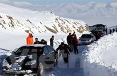 Băng tuyết ảnh hưởng tới 1,4 triệu người Trung Quốc