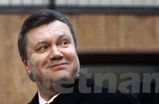 Ông Yanukovych: Ukraine không có ý định vào NATO