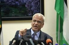 Trưởng đoàn đàm phán Palestine hoãn thăm Nga