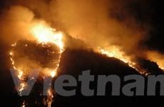 Kiên Giang: Cháy lớn làm thiệt hại 300ha rừng