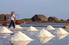 Giá muối nguyên liệu giảm mạnh ở TP.Hồ Chí Minh