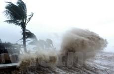Bạch Long Vĩ, Hải Phòng bị thiệt hại nặng do bão