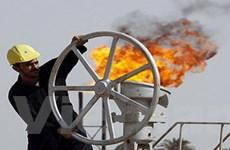 OPEC nâng dự báo nhu cầu dầu mỏ thế giới 2010