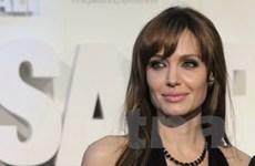 Sắp ra mắt cuốn sách về tiểu sử của Angelina Jolie